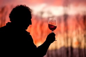 Wine tours in Mendoza - The romance of wine at the foot of the Andes. Unique experience
