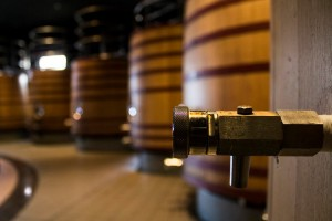 Wine tours in Mendoza - Magnificent wineries and great wines